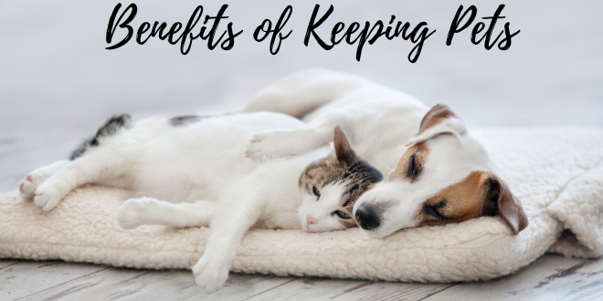 Benefits of Keeping Pets